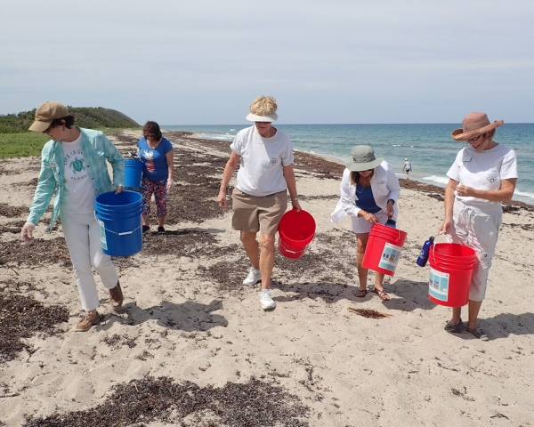 Citizen Science Marine Debris Program