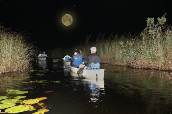 Moonlight Guided Canoe Tour