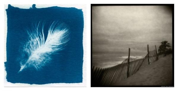 Cyanotype Painting Workshop with David Durbak